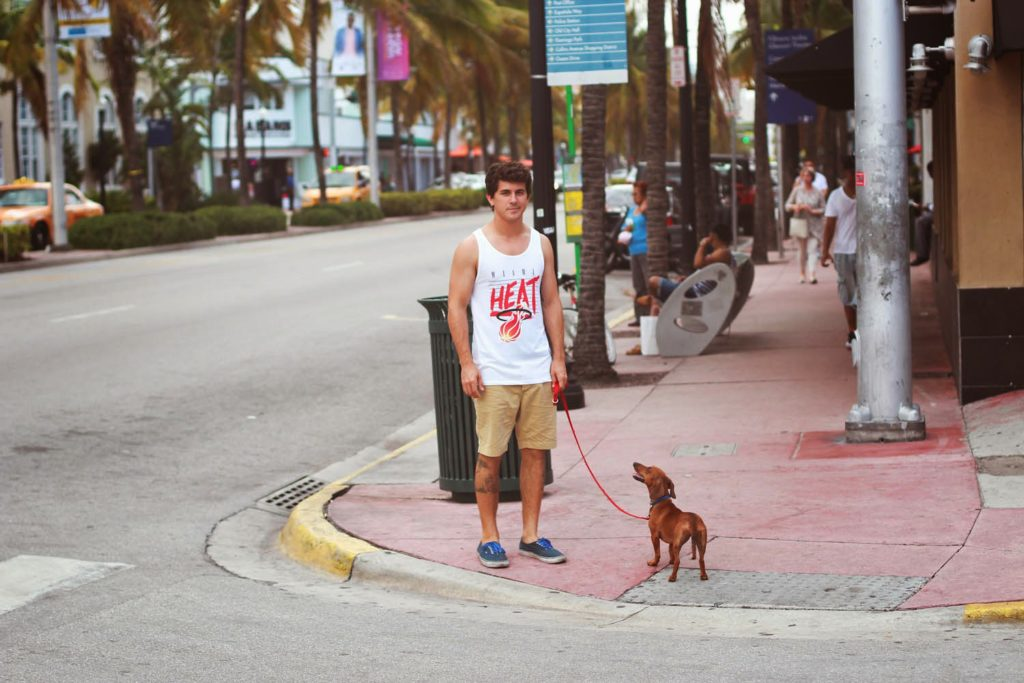 miami beach fashion blog