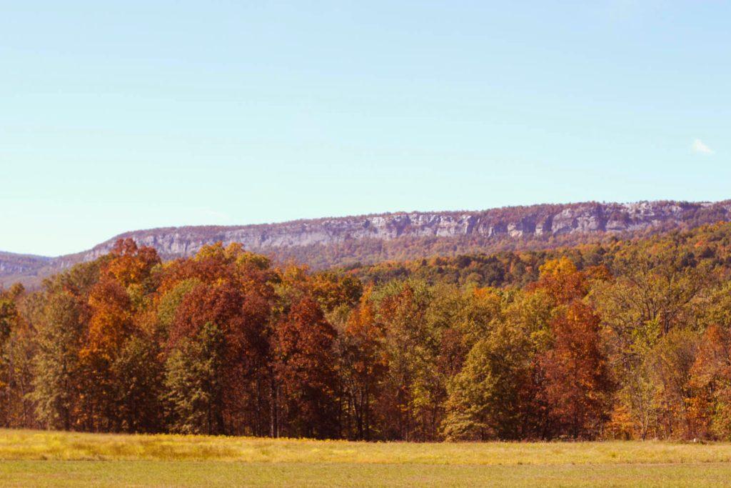 fall leaves, upstate ny