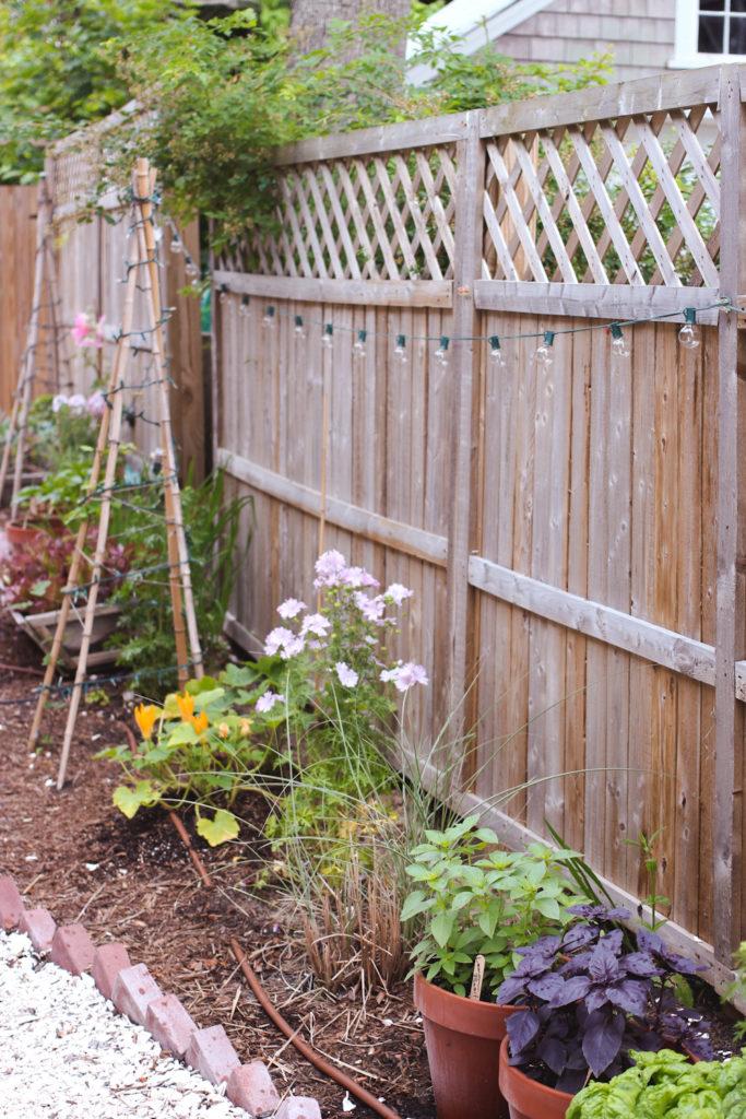 lucky hanks garden