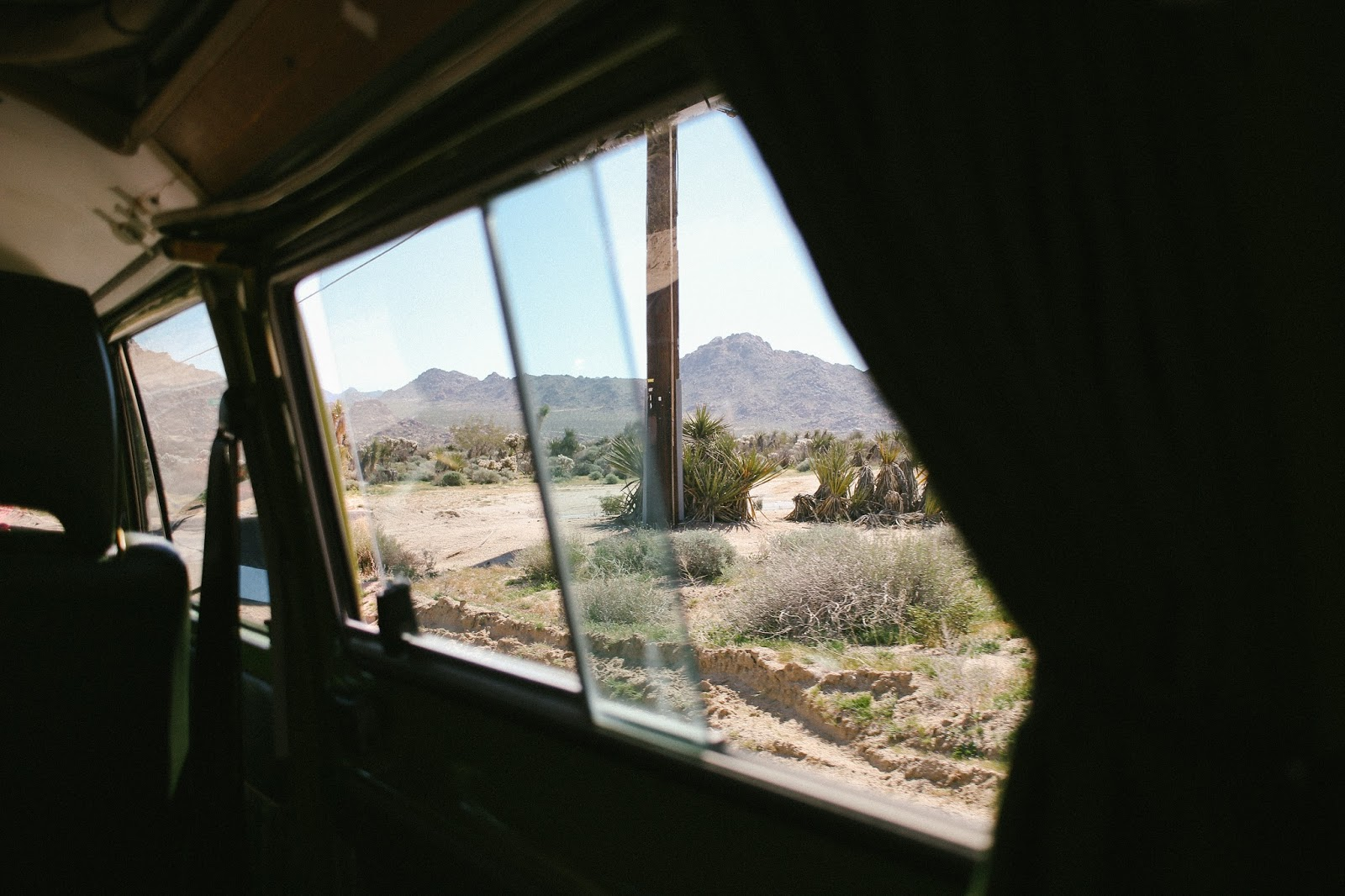 car window at joshua tree